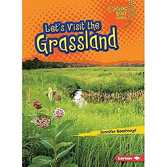 Wir besichtigen das Grasland (Lightning Bolt Bücher Biom Entdecker)