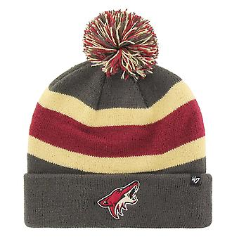 47 Marka Knit Winter Hat - BREAKAWAY Arizona Coyotes