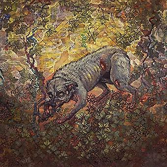 Pyrrhon - What Passes for Survival [CD] USA import
