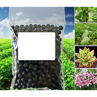 10g - General Purpose Safe And Pollution Free Organic Fertilizer For Garden