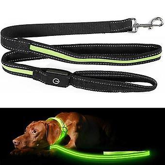 Hundebånd med LED / bånd for hund - 175 cm