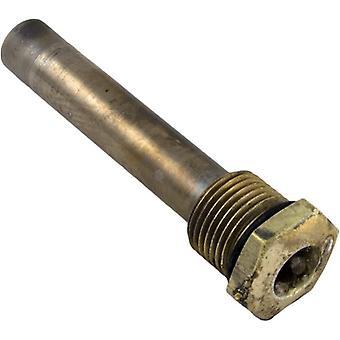 Raypak 003765F Sensor Well