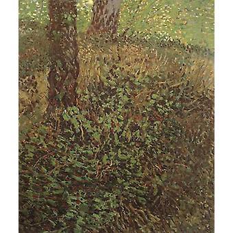 Undergrowth,Vincent Van Gogh,46x38cm