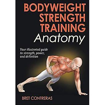 Kroppsvikt styrka utbildning anatomi