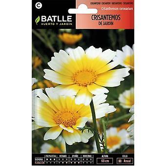 Batlle Garden Chrysanthemum (Garden , Gardening , Seeds)