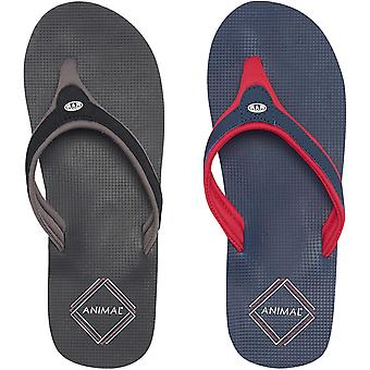 Animal Mens Jekyl Swish Casual Summer Slip On Beach Holiday Sandals Flip Flops