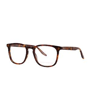 Barton Perreira Clay BP5017 0LY Chestnut Glasses