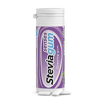 Steviagum Senses Cranberry & Mint Gum 15 units