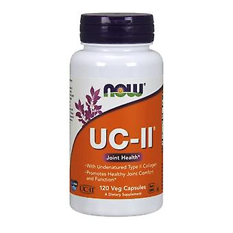Now Foods UC-II Type II Collagen, 120 Vcaps