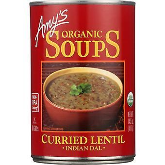 Amys Soup Crried Lntl Gf, Case of 12 X 14.5 Oz