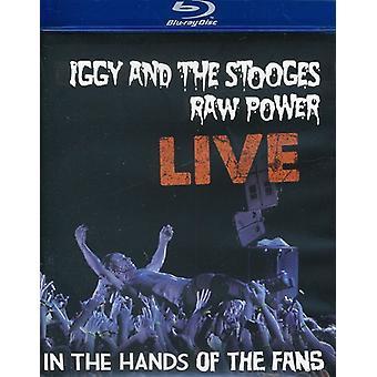 Iggy & the Stooges - Raw Power Live: dans les mains de l'importation des USA de Fans [BLU-RAY]