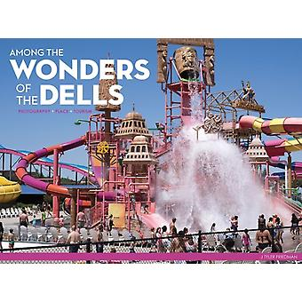 Among the Wonders of the Dells by Tyler Friedman