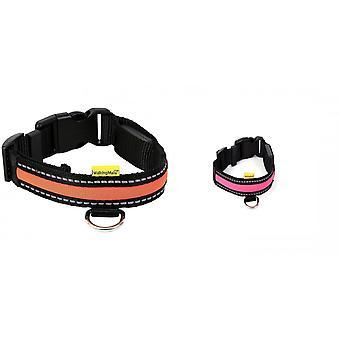 Animate Soft LED Dog Collar