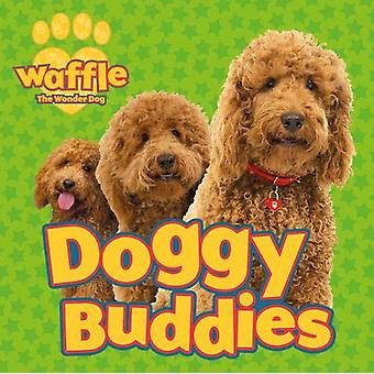 Doggy Buddies by Scholastic - 9780702300134 Book