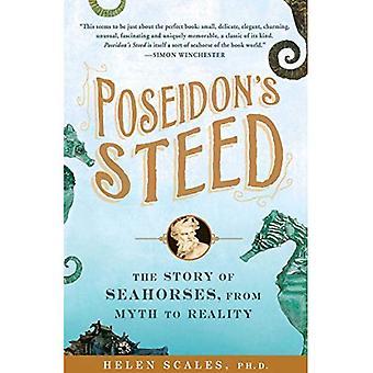 Poseidon's Steed: The Story of Seahorses, from Myth to Reality
