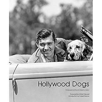 Chiens de Hollywood: Photographies de la John Kobal Foundation