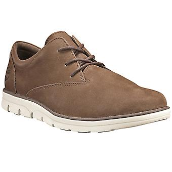 Mens Timberland برادستريت أكسفورد الذكية عارضة المدربين الدانتيل حتى الأحذية
