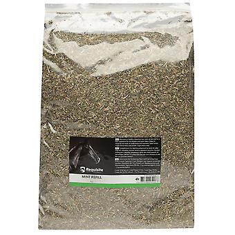 Requisite Mint Refill Stimulate Appetite Horse Digestive System Supplement