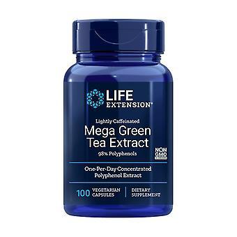 Licht cafeïnehoudende Mega Groene Thee Extract 100 plantaardige capsules