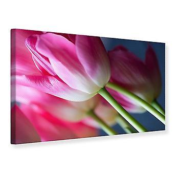 Canvas Print Macro Tulip van