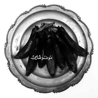Land of Kush's Egyptian Light Orchestra - Monogamy [CD] USA import