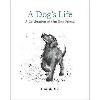 Koiran elämää - juhla paras ystävä Hannah Dale - 97819