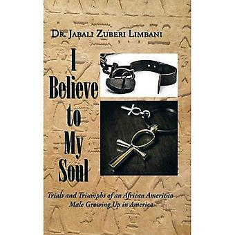 I Believe to My Soul: Trials and Triumphs of an African American Male Growing Up in America (Hardback)