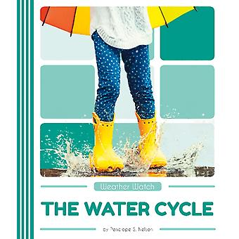 Weather Watch The Water Cycle