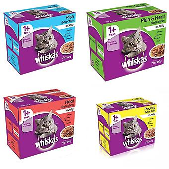 Whiskas Pouch 1+ Jelly Cat Food (4 X 12 Pack X 100g)