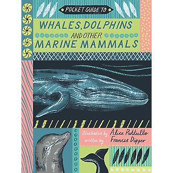 Pocket Guide to Whales Dolphins and other Marine Mammals by Dr Frances Dipper & Illustrated by Alice Pattullo
