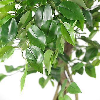 120cm Twisted Trunk Artificial Japonais Fruticosa Style Ficus Arbre