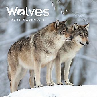 Wolves Mini Square Wall Calendar 2021