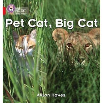Pet Cat, Big Cat : Band 02a/Rood a