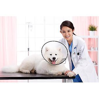 Pet collars harnesses pet dog necklace size neck tower 37-44 cm random color