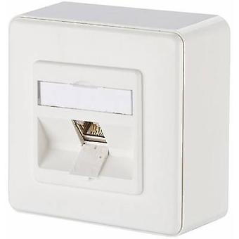 Metz Connect Network Outlet Surface-Mount CAT 6 1 poort zuiver wit
