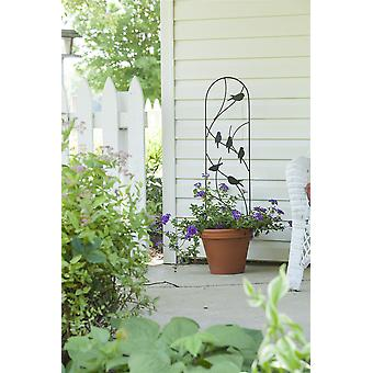 Panacea perching Birds Pot Trellis Black Stylish