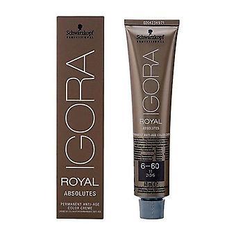 Permanent Anti-Ageing Dye Igora Royal Absolutes Schwarzkopf N 6-60