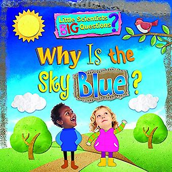 Why Is The Sky Blue? by Ruth Owen - 9781788560238 Book