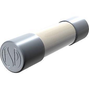 Püschel FST6,3A Micro zekering (Ø x L) 5 mm x 20 mm 6,30 A 250 V Vertraging -T- Inhoud 10 pc's