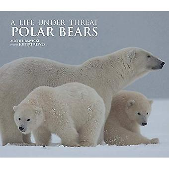 Polar Bears - A Life Under Threat by Michel Rawicki - 9781788840422 Bo