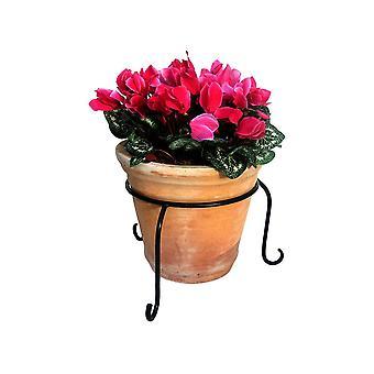 Garden Pride Flower Pot Ring