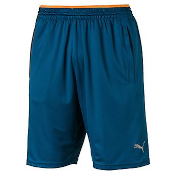Puma Collective Knit Shorts Mens Casual Branded Pants 518362 06