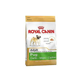 Βασιλικό Canin Παγκ ενηλίκων πλήρης τροφή για σκύλους