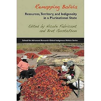 Remapping Bolivia: Resources, Territory and Indigeneity in a Plurinational State (School for Advanced Research...