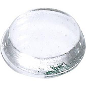 3M 7000001952 noha kruhový priehľadný (š x H) 19 mm x 4 mm 1 ks (s)