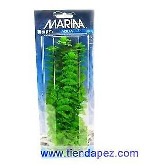 Marina AQUASCAPER Gde.  AMBULIA 30 cm (Fish , Decoration , Artificitial Plants)