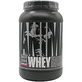 Universal Nutrition Animal Whey - About 27 Servings - Strawberry