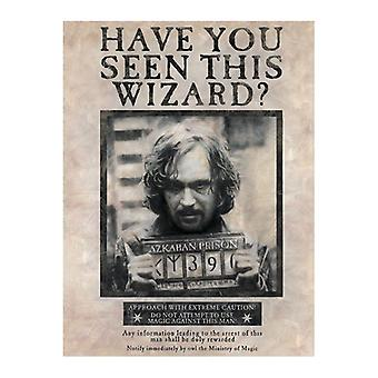 Harry Potter, Maxi Poster-Sirius Black