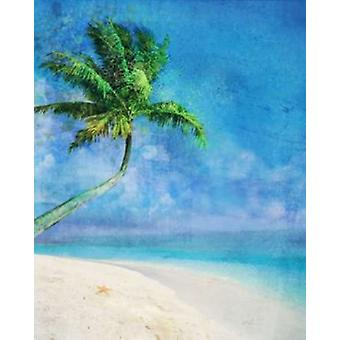 Palm Beach and Starfish Poster Print by Ken Roko