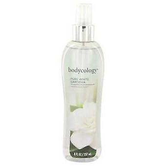 Bodycology Pure White Gardenia tekijä Bodycology tuoksu sumu spray 8 oz (naiset) V728-530531